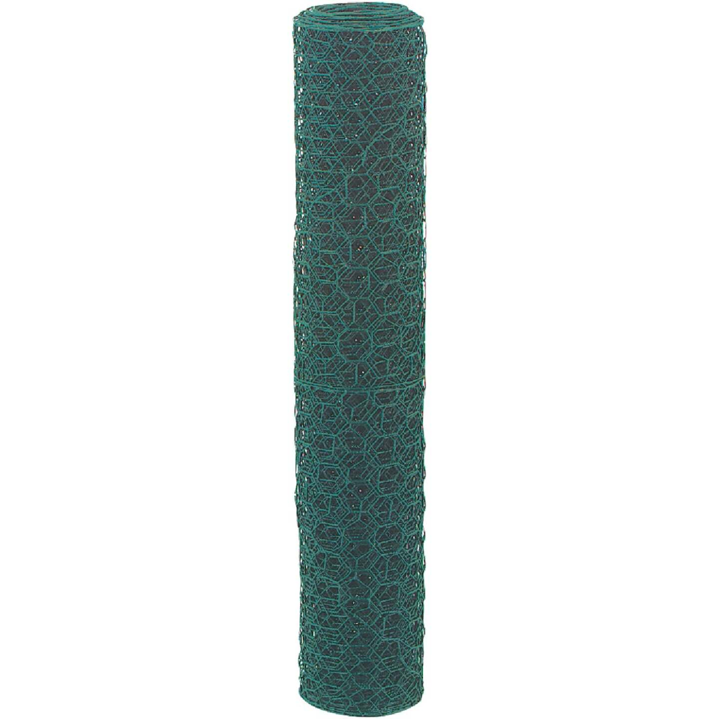 1 In. x 24 In. H. x 25 Ft. L. Green Vinyl-Coated Poultry Netting Image 3