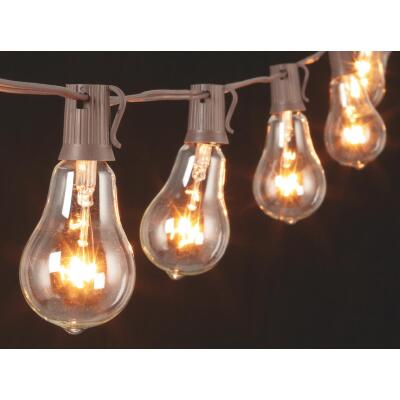 Gerson 10 Ft. 10-Light Clear Bulb String Lights